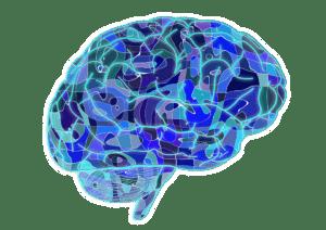 brain-951874_960_720-300x212