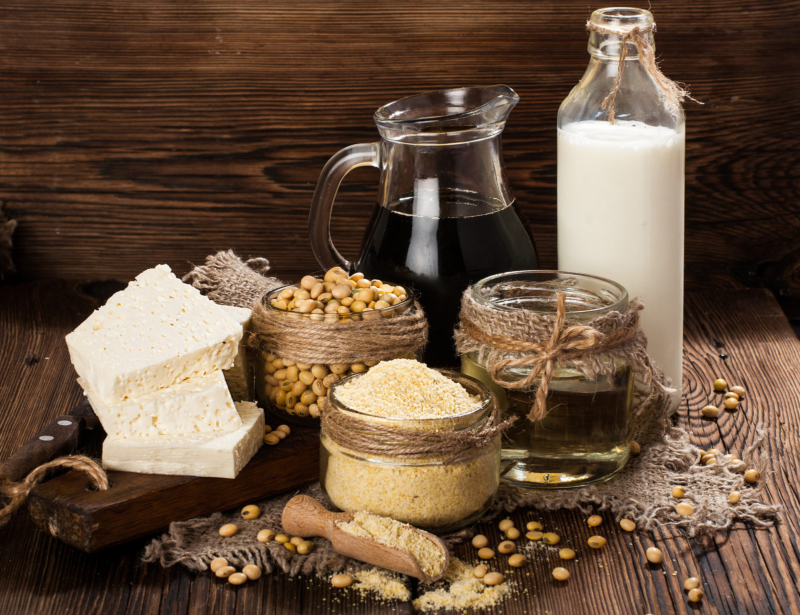 bigstock-Soy-products-soy-flour-tofu-120326774