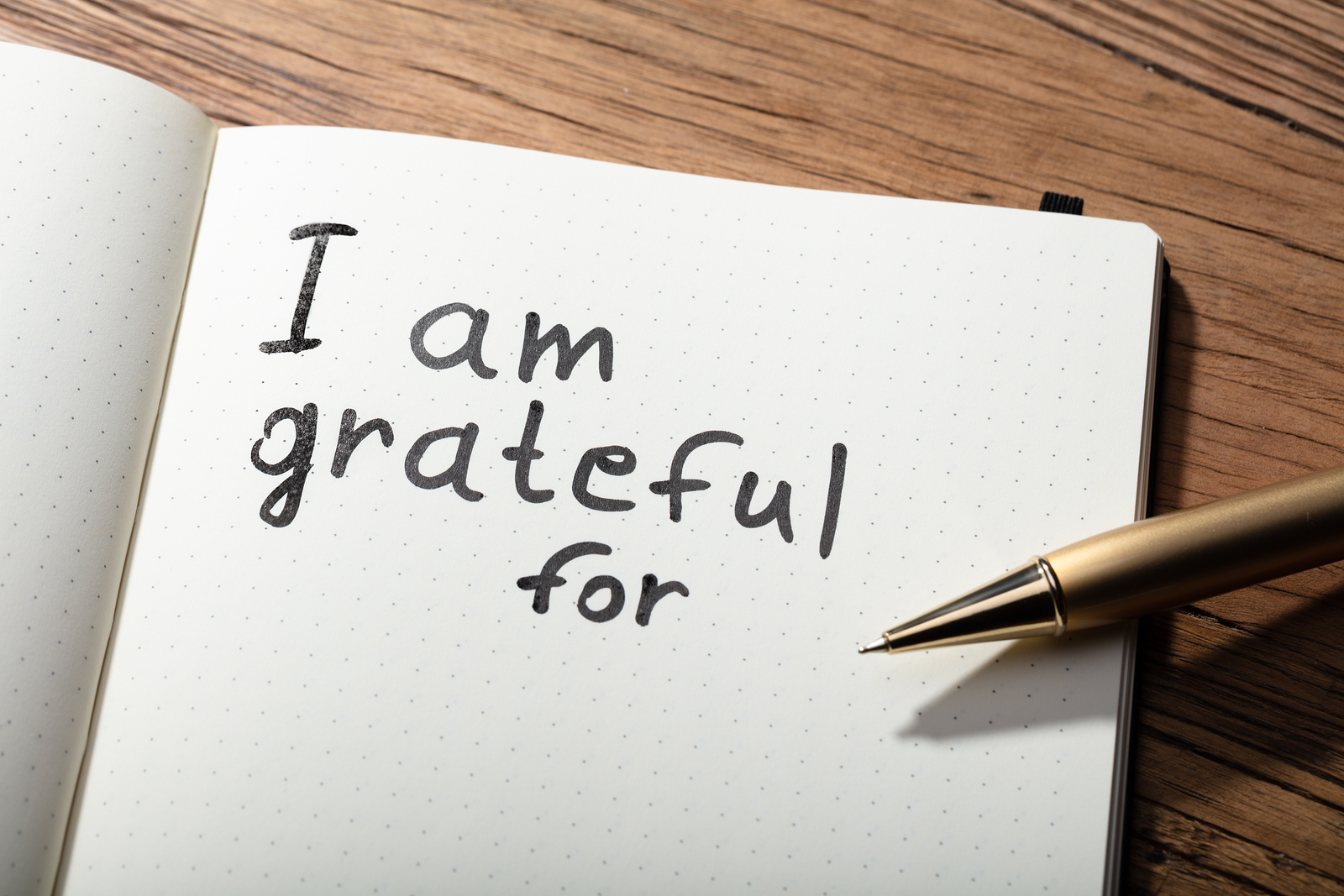 Image result for being grateful